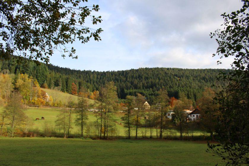 trip-alpirsbach-schwarzwald-87